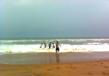Kalingapatnam Beach 4