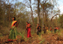 Jungle Walking