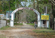 Manas Wildlife Sanctuary 1