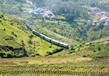 Mountain Railways Of India 1