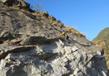 Activities In Himachal Pradesh